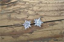 Trachtenohrstecker Edelweiss - 10 kristall